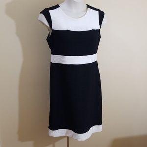💥💥HOST PICK 💥💥Dress Barn size 14 sheath dress